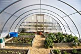 Farm Plastic Supply 4 Year Clear Greenhouse Film 6 mil thickness (16'W x 28'L)