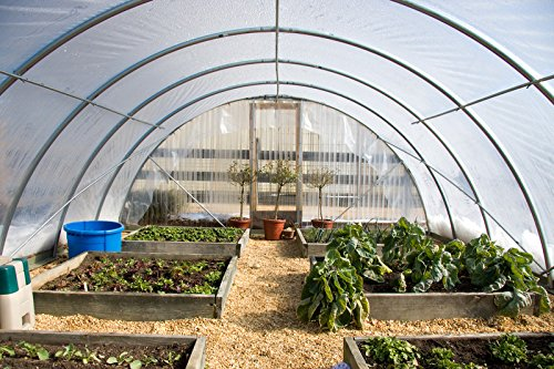 Farm Plastic Supply 4 Year Clear Greenhouse Film 6 mil thickness (16'W x 28'L) by Farm Plastic Supply