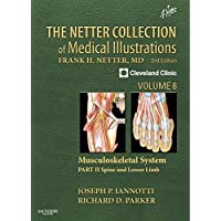 The Netter Collection of Medical Illustrations: Musculoskeletal System, Volume 6...