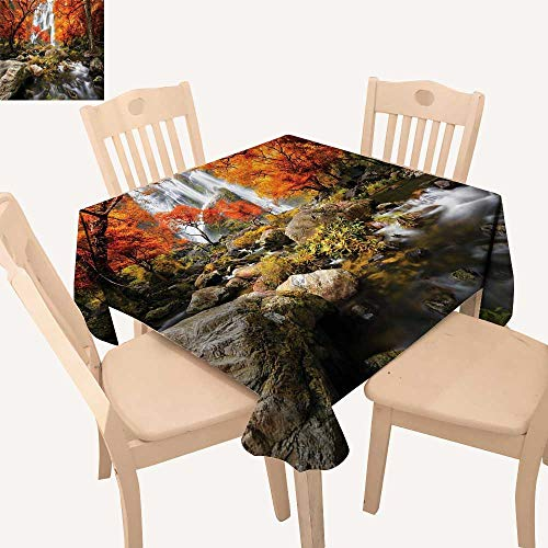 (UHOO2018 Fitted Polyester Tablecloth   Trees ic Thai Waterfall and River Park in The Autumn Square/Rectangle Washable for Tablecloth,50x)