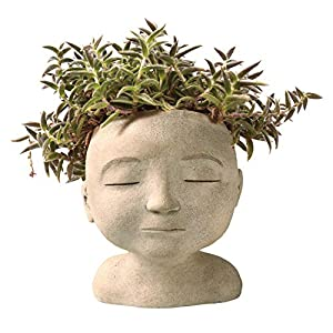 "ART & ARTIFACT Head of a Man or Woman Indoor/Outdoor Resin Planter - Plants Look Like Hair, 9"" Tall 33"