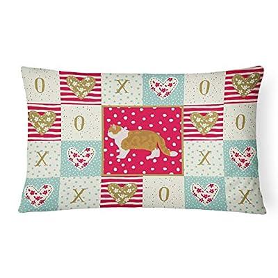 Caroline's Treasures CK5614PW1216 Exotic Shorthair #1 Cat Love Canvas Fabric Decorative Pillow, 12H x16W, Multicolor : Garden & Outdoor