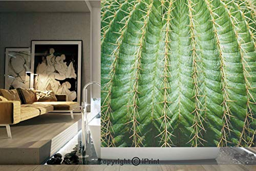 Ylljy00 Decorative Privacy Window Film/Photo of Cactus with Spikes Plant Flower Fruit from Close Zoom Shoot with Spikes/No-Glue Self Static Cling for Home Bedroom Bathroom Kitchen Office Decor Green