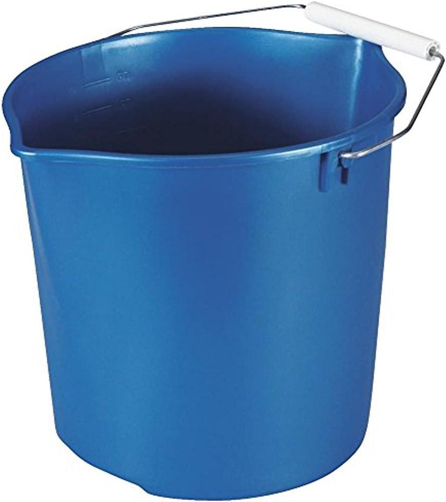 Rubbermaid Home FG2963TPROYBL 11Qt Blue Bucket