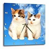 3dRose dpp_4335_3 Two Kittens-Wall Clock, 15 by 15-Inch Review