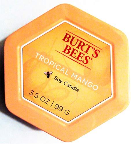 Burts Bees Tropical Mango Soy Candle, 3.5 oz