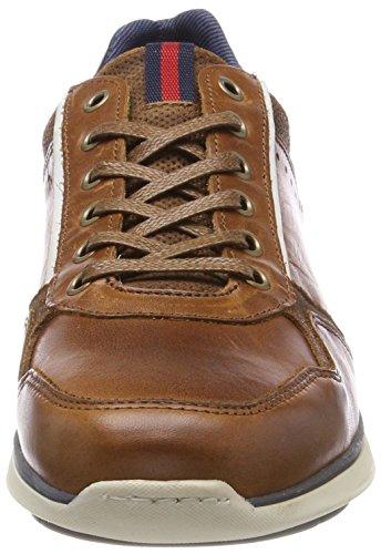 6718a Brun Boxeur Sneaker Hommes cognac Taureau Zq4wUI