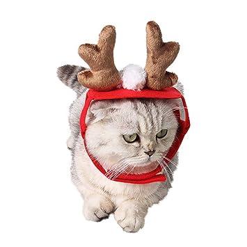 Haustier Hund Santa Hat Weihnachtsgeschenke Für Katze Kalolary