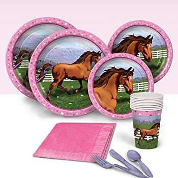 Amazon.com: Hooray for Horses Birthday Party Pack Party Supplies ...