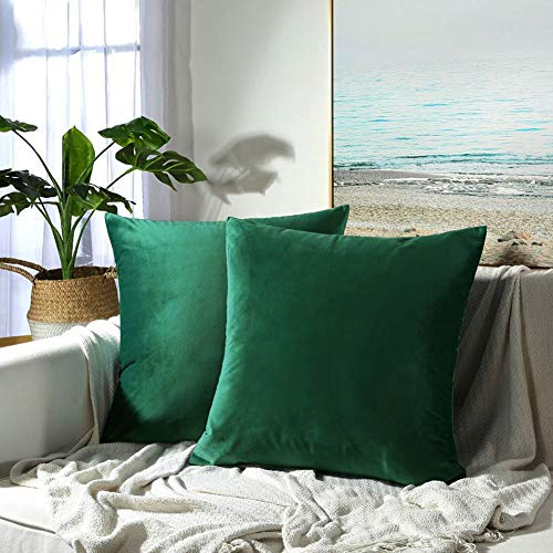 JUSPURBET Velvet Pillow Covers 16x16 Inches,Pack of 2 Decorative Throw Pillow Covers for Sofa Couch Bed, Super Soft Throw Pillows Cases,Dark Green