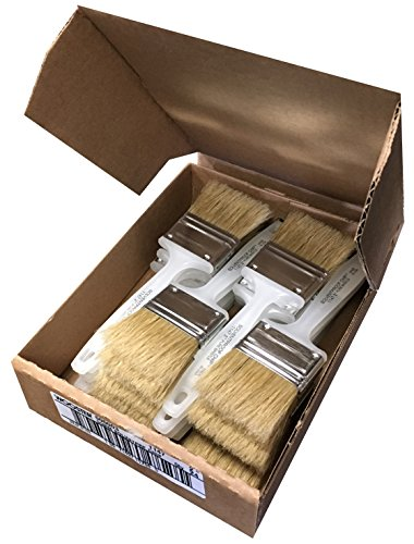 Brush Acid (Wooster Brush 1147 2 Inch Solvent-Proof Chip Brushes, Pack of 24)
