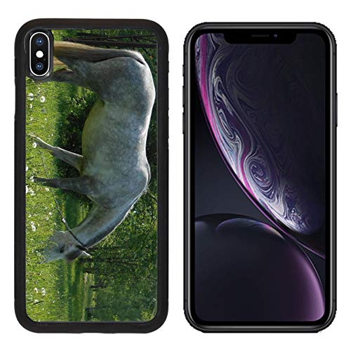Liili Premium Apple iPhone XR Aluminum Backplate Bumper Snap Case Image ID: 28580780 Gray Horse on Green Grass in Summer Park