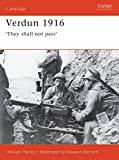 verdun 1916 they shall not pass campaign