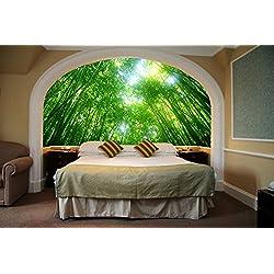 Startonight Mural Wall Art Photo Decor Green Lights Medium Medium 4-feet 2-inch By 6-feet Wall Mural for Living Room or Bedroom