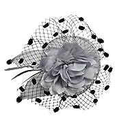 Women Fascinator Hair Clip Headband Veil Flower Cocktail Tea Party Headwear