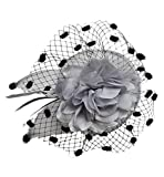 Coolwife Womens Fascinator Veil Flower Cocktail Tea Party Headwear (Grey)