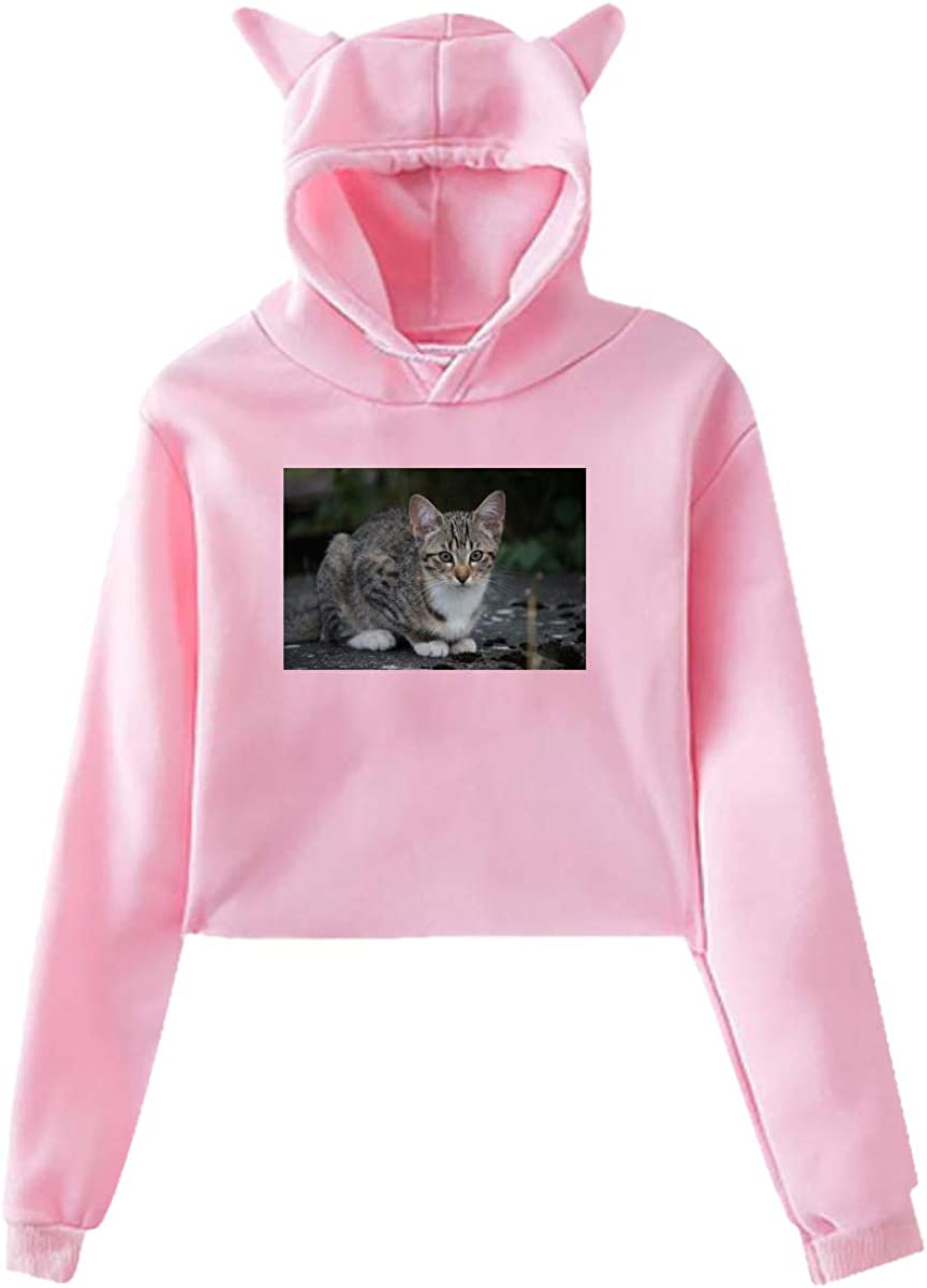 Personality Girl Cat Ears Umbilical Hoodie Fashion Sweatshirt Sweater Pink