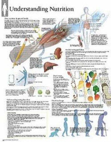 Understanding Nutrition chart: Wall Chart