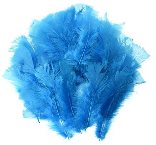 Turkey Flat Feathers - 7