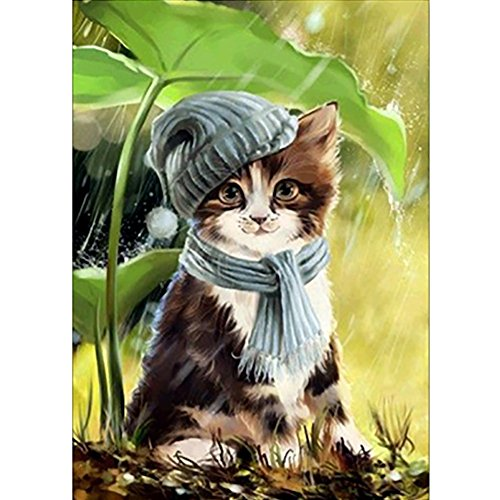Diamond Painting Kits Full Drill 5D DIY Paint-By-Number Embroidery Kits with Diamonds for Home Arts Wall Decor - Rainy Wool Hat Kitty 12x16'' (30x40cm) (Hat Wool Drill)