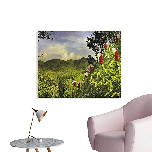 (Anzhutwelve Forest Photographic Wallpaper Rural Scenery Costa Rica Countryside Greenery Tropic Accents Botanical Space Poster Green Red Violet Blue W36 xL32)