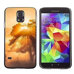 // PHONE CASE GIFT // Duro Estuche protector PC Cáscara Plástico Carcasa Funda Hard Protective Case for Samsung Galaxy S5 / Glow Árbol Misty /