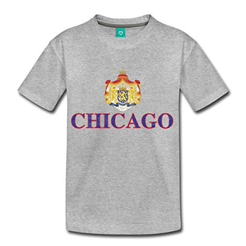 Spreadshirt Chicago Netherlands Coat Of Arms Toddler Premium T-Shirt, Youth 4T, Heather Gray Netherland Coat Of Arms