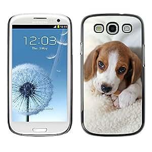 King Case - FOR Samsung Galaxy S3 - Dog Cute Puppy Pet Paws - Caja protectora de pl??stico duro Dise?¡Àado