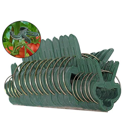 Hefu Garden  40 pcs Tools for Supporting Straightening Horticultural Plant Flowers and Stems and Vine to Avoid Plant Damage or Injury