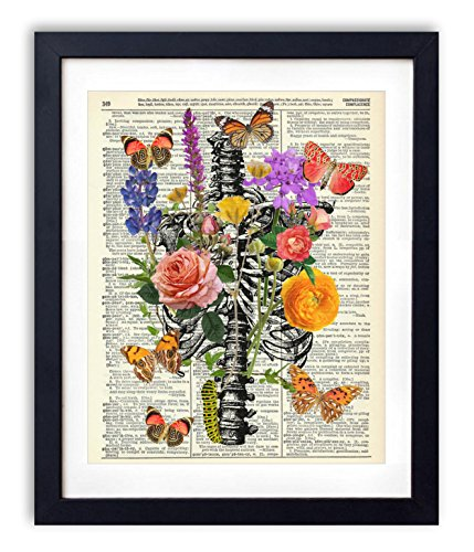 Wall Cage Art (Rib Cage With Flowers, Butterflies & Caterpillar Upcycled Vintage Dictionary Art Print 8x10)