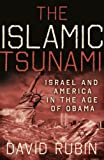 The Islamic Tsunami, David Rubin, 0982906706