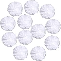 "Landisun Wedding Birthday Party Room Decoration Tissue Paper Flower Poms(10"" Inches (pack of 12), White)"