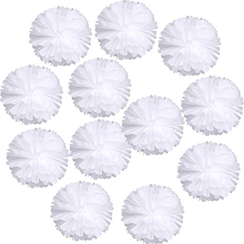 Landisun Wedding Birthday Party Room Decoration Tissue Paper Flower Poms(10