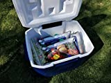 4 Mid-Size Cooler Freeze Packs 10x10 inch Screw