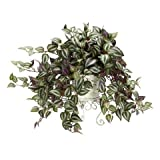 Exclusive By Nearly Natural Wandering Jew w/Metal Planter Silk Plant