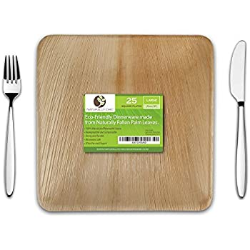 10  Square Disposable Palm Leaf Paper Plates Compostable Biodegradable Heavy Duty Dinner Party Plate - Comparable to Bamboo Wood - Elegant Plant Based ...  sc 1 st  Amazon.com & Amazon.com: Disposable Wood Plates 7.5u201d x 5.5u201d u2013 50Pk. Natural Eco ...