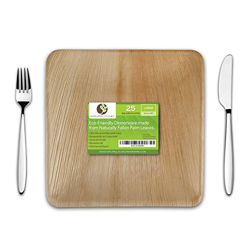 "Naturally Chic 10"" Square Disposable Palm Leaf Plates - 25 Pack - Small Dinnerware Set - Eco-Friendly, Biodegradable & Compostable - Ideal for Weddings, Parties, Home Use, Events -"