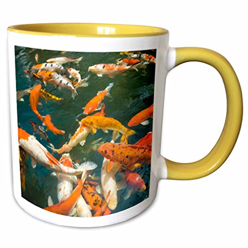 3dRose Danita Delimont - Fish - Ornament Koi, Shopping Mall, Malacca, Malaysia -AS23 SWS0093 - Stuart Westmorland - 11oz Two-Tone Yellow Mug - Westmorland Mall