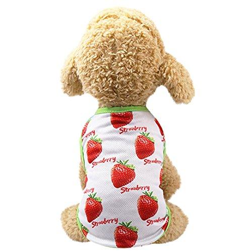 OOEOO Pet Shirt Couple Dress Puppy Dog Princess Doggie Apparel Costume Clothing (Strawberry Shirt, -