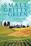 Small, Gritty, and Green: The Promise of America's Smaller Industrial Cities in a Low-Carbon World (Urban and Industrial Environments)
