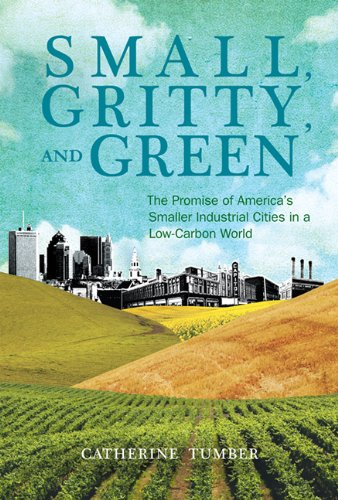 Small, Gritty, and Green: The Promise of America's Smaller Industrial Cities in a Low-Carbon World (Urban and Industrial