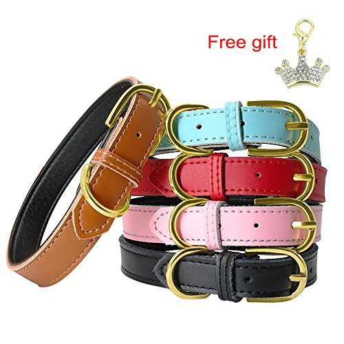 PET ARTIST Pink Classic Soft Padded Leather Dog Collar for Small& Medium - Fashion Collar Dog