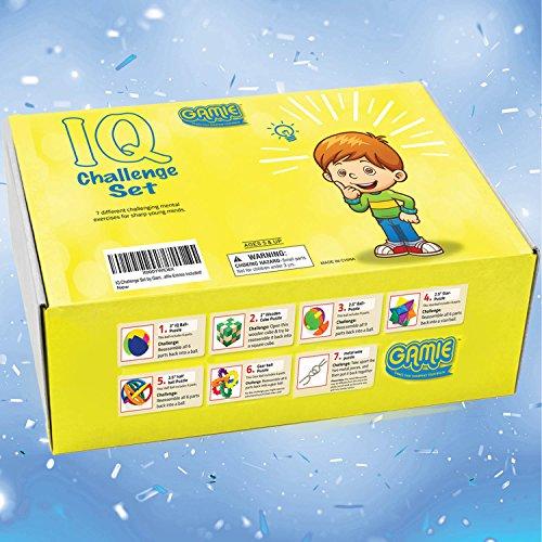 IQ Challenge Set by GamieUSA - 7 Pcs Kids Educational Toys ...