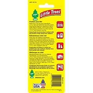 Little Trees Black Ice Air Freshener, (Pack of 24)