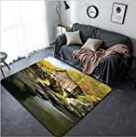 Vanfan Design Home Decorative 107987690 Glade Creek Grist Mill in Babcock State Park West Virginia Modern Non Slip Doormats Carpet for Living Dining Room Bedroom Hallway Office Easy Clean Footcloth