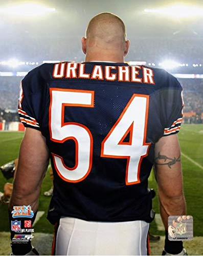 - Brian Urlacher Chicago Bears Action Photo (Size: 8