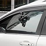 Triple Cup DSLR Camera Suction Mount w/Ball Head