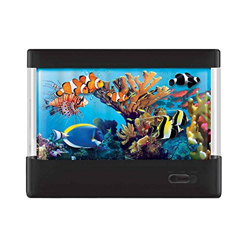 Discovery Kids Animated Tropical Aquarium product image