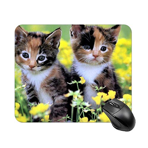 FGN Desktop Wallpaper Cats and Kittens Gaming Mouse Pad Custom for Desktops, Computer, Pc and Laptops -