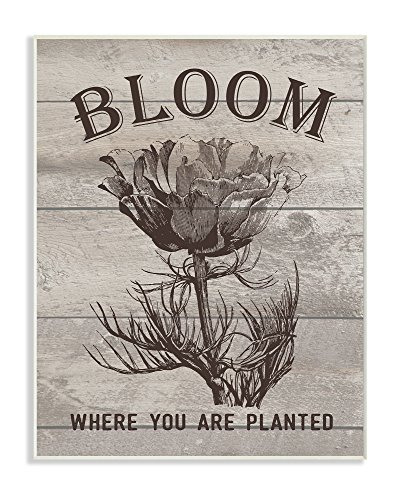 (Stupell Home Décor Bloom Where You're Planted Vintage Flower Line Drawing Wall Plaque Art, 10 x 0.5 x 15, Proudly Made in USA)